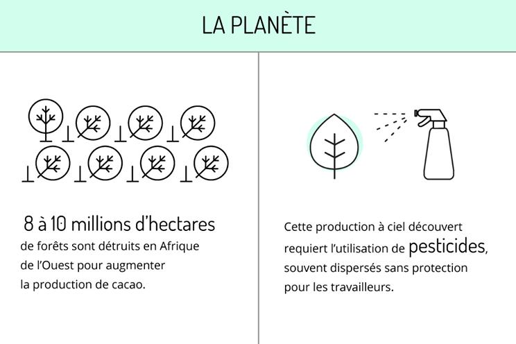 Idécologie Infographie cacao 1- La planète